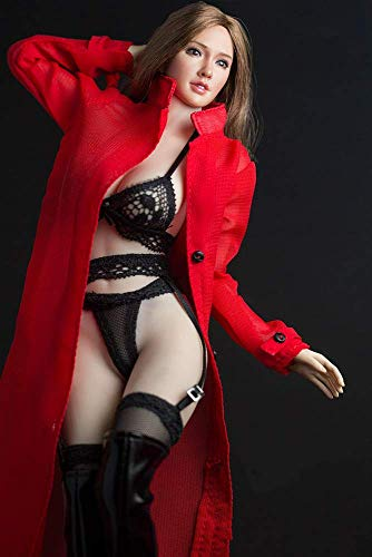 ZSMD 1/6 Scale Female Figure Doll Clothes, Handmade Costume, Dustcoat +Bra + Panty+Stockings Sets...