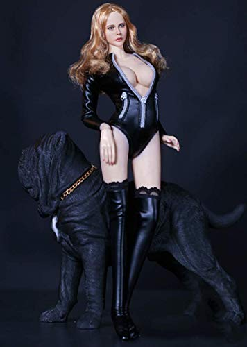 ZSMD 1/6 Scale Female Figure Doll Clothes, Handmade Sexy Bodysuit, Stockings, Shoes & Accessories...