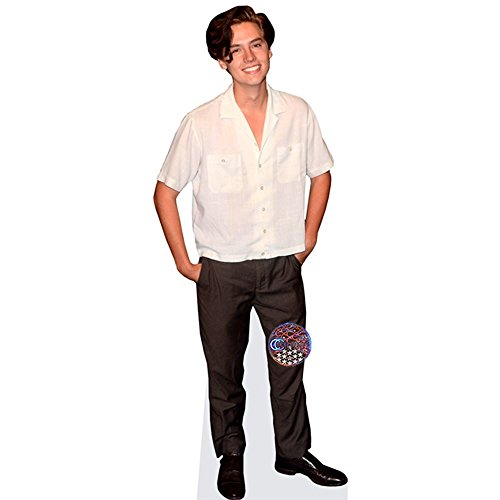 Celebrity Cutouts Cole Sprouse Pappaufsteller Mini