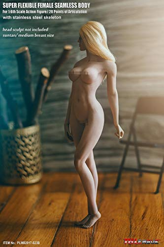 NEDTO 1/6 Female Super Flexible Seamless Body Pale Action Figure (S23B)