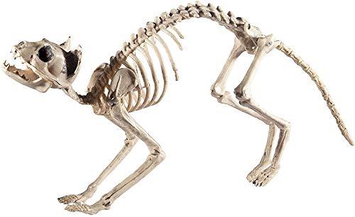 Halloween! Smiffys Katzenskelett, Natürlich, 60cmx12cmx25cm / 24inx5inx10in