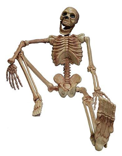 Cultica(R) Deko Figur Horror Skelett rundum plastisch komplett 1,1 Meter groß Grusel Gerippe...