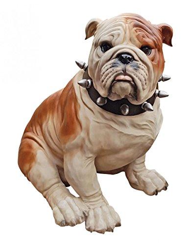 Fachhandel Plus Große Englische Bulldogge - 55cm hoch - Exklusive Hunde-Figur für Haus & Garten