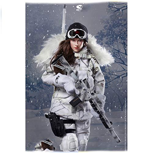 1/6 Snow Gunner's Set - Ice Queen Verschiebbare Puppe Mit Modell Eines Verschneiten Soldaten Für...