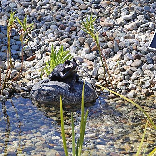 CLGarden Set Frosch Wasserspeier NSP10 Teichfigur Solarbrunnen mit Solar Pumpe für Teich...