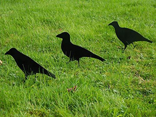 garden mile® Set von 3 schwarzen Vogelkrähen Tier-Silhouette Garten Ornamenten Stahl Verschiedene...