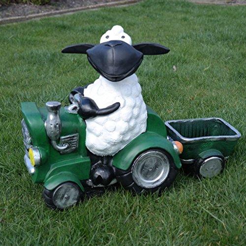 Schaf Molly auf Traktor, zum Bepflanzen, Tierfigur Deko Garten Terrasse